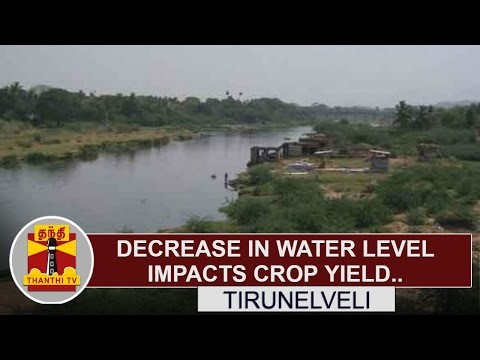 Decrease in water level impacts crop yield, Farmers request to construct check dam | Thanthi TV