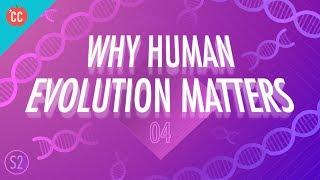 Why Human Evolution Matters: Crash Course Big History 205