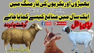 Goat franchise | How to Get frenchise | Goat Farming with