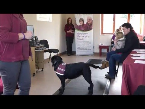 Hearing dogs for deaf people, Pocklington.