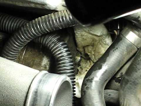 Supercharger oil change min--syringe