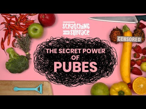 The Secret Power of Pubes  | Scratching the Surface