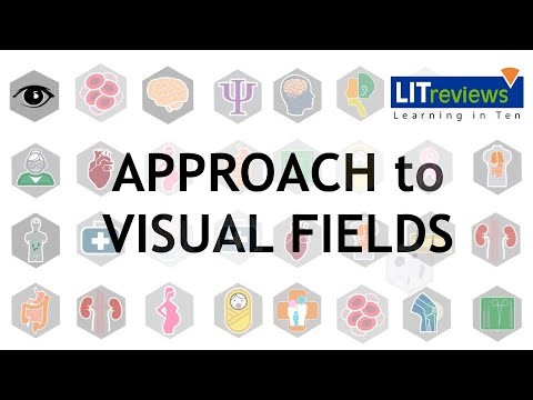 An Approach to Visual Fields