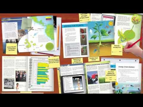 Deep End Nonfiction: Core literacy for middle and upper primary