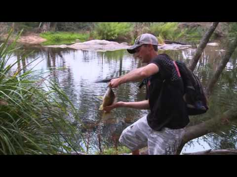 Rapala Tip of the Week - Bass Fishing with Poppers
