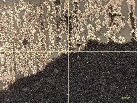 Failed lithium cell under electron microscope.