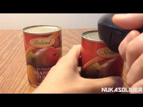 Rolands Canned Fruit Review - Canned Mangos