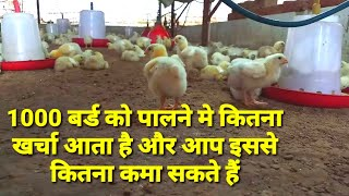 Broiler Poultry Farm Project Cost Details in Easy Way /Chicken