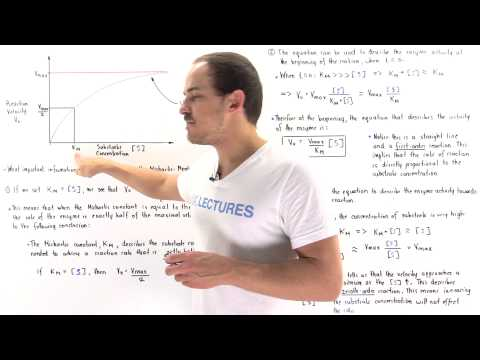 Interpretation of Michaelis-Menten Equation