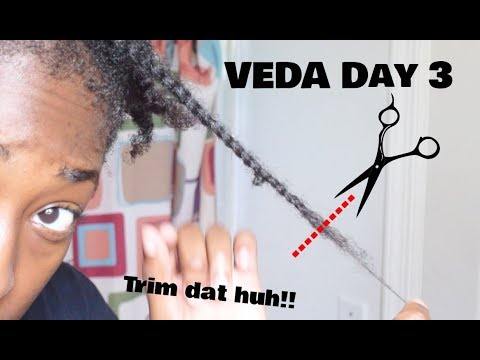 How to Trim Thin/Fine Hair! (Tapered Cut Edition) | VEDA Day 3