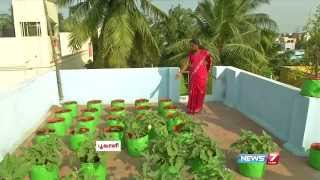 How to Grow Vegetables in a Container or Pots on the Terrace | Poovali | News7 Tamil