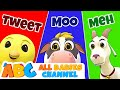 Baby Animals Song Nursery Rhymes And Kids Songs