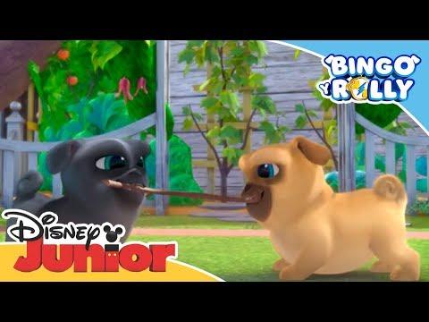 Bingo y Rolly: Lanzamientos automáticos | Disney Junior Oficial