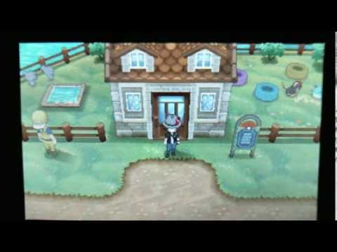 Pokemon X & Y Money Guide