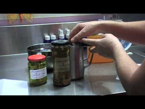 How to make Calendula Infused Oil for Aromatherapy use.