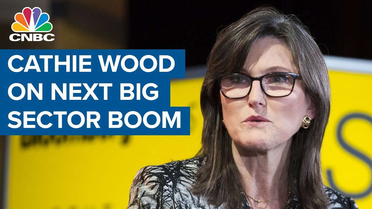 Cathie Wood: Digital wallets and genomics are the next big sector boom