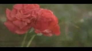 اخرین اخبار از سهام عطر گل یاس Mahdi Abdoli Buya Siba.mp4 - Поисковик музыки mp3real.ru