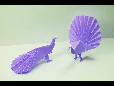 Origami Peacock - Time-lapse