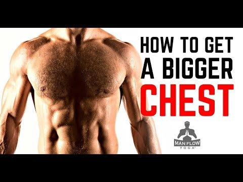 Build A Bigger Chest without Weights