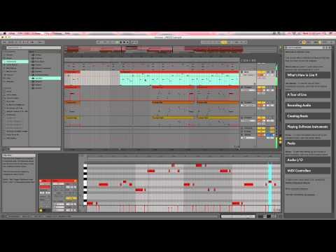 Original Reggae Beat (Ableton)