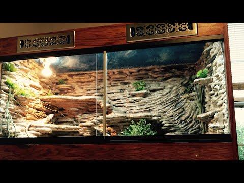 100% HOMEMADE BEAUTIFUL MASSIVE Terrarium For Bearded Dragon (AVAILABLE)
