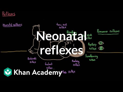 Neonatal reflexes   Behavior   MCAT   Khan Academy
