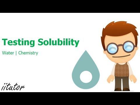√ Testing Solubility | Water | iitutor