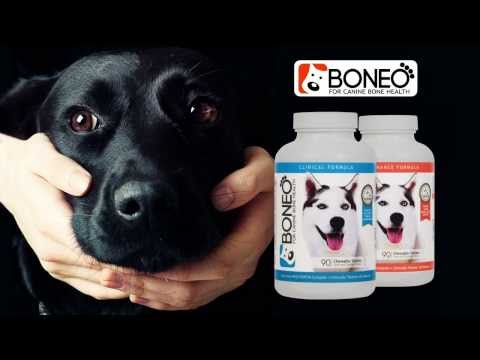 Boneo Canine® All in One Bone and Joint Supplement for Dogs