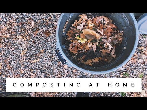 how to start your own compost | simple | eco friendly
