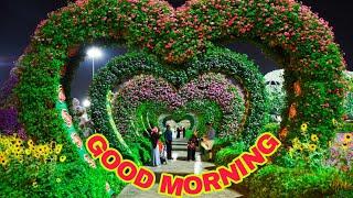 Good Morning Wish For Whatsapp Odia Pakfilescom