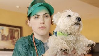The Dog Trainer | Cara Connors