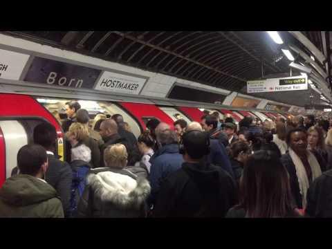 | Victoria Line | London Victoria Station | London Underground | Peak Hours |