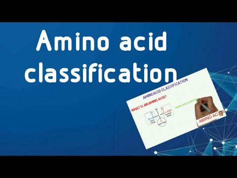 Amino acid classification easy way to remember