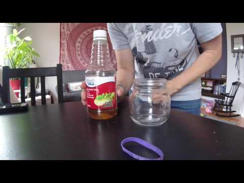 How to get rid of fruit flies QUICKLY - BEST way to get rid of them