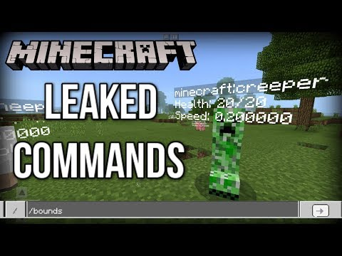 Minecraft: Accidental LEAKED Commands (Devs Left These in the Game!)