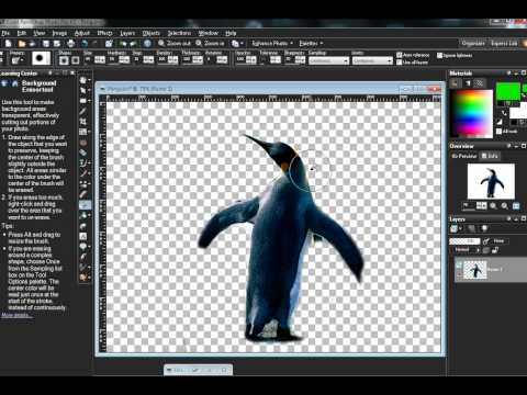 How to use paintshop pro (combining pictures)