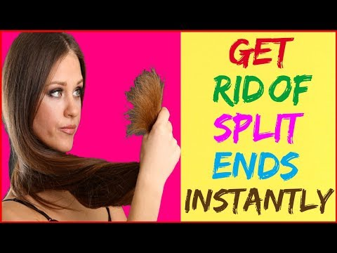 How To Repair Split Ends - Get Rid of Split Ends Without Cutting Them - Maintain Long Healthy Hair