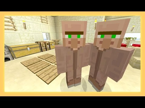 Twins ~ Village Life ~ [11] - Sqaishey  & Stampy