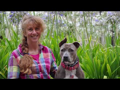 Nan Daley and Jasmine - AKC National Obedience Championship