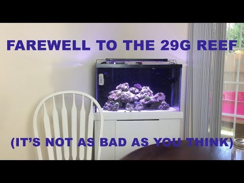 Farewell to the 29g reef tank