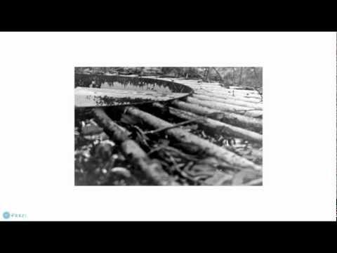 Developing Black n White Film With Caffenol C