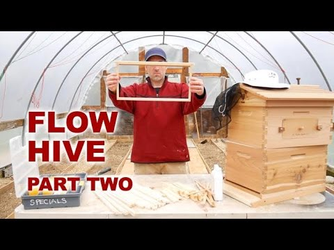 Flow Hive - Building Brood Frames, Tung Oil - Novice Beekeeping Part 2