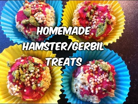 DIY Treats for Hamsters and Gerbils| Cupcakes with icing and sprinkles