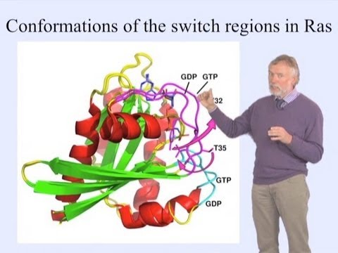 Alfred Wittinghofer (MPI) Part 1: GTP-binding Proteins as Molecular Switches