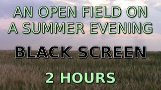 The Sounds of an Open Prairie Field in Summer (2 hours)