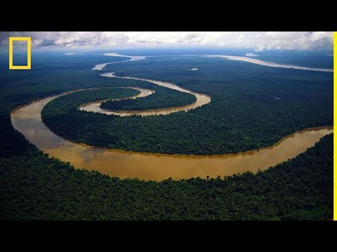 National Geographic   Amazon River   NatGeo Wild
