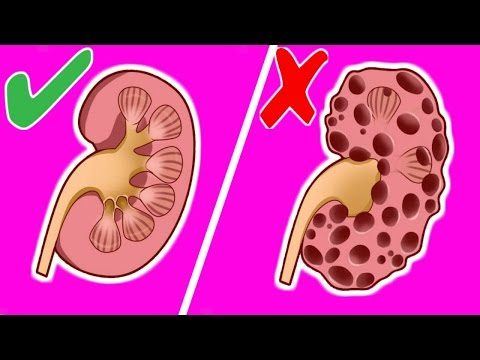 8 Habits that can Seriously Damage your Kidneys