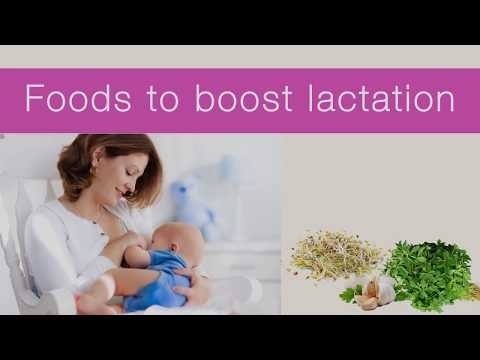 Foods to Boost Lactation