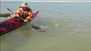 How to Sea Kayak : Sea Kayaking: Preventing Rolling