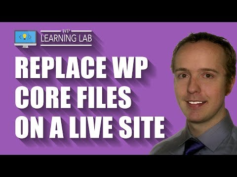 WordPress Core Files Replacement Done Manually On A Live Site